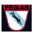 FEGAS (Federación Gallega de Actividades Subacuáticas)
